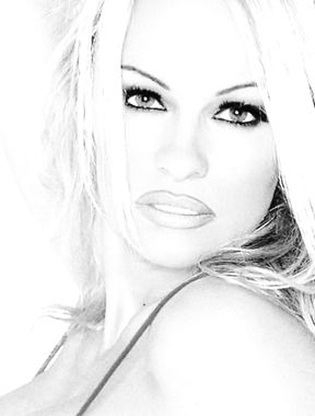 Pamela Anderson tits and pussy photo collection